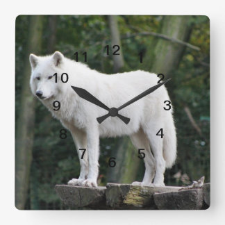 White Wolf salvaje Reloj Cuadrado