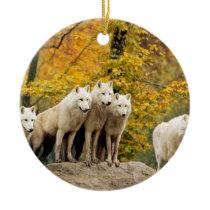 White wolf - snow wolf - wolf animal ceramic ornament