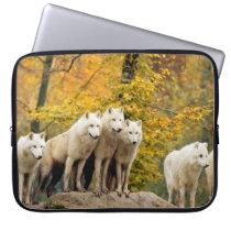 White wolf - snow wolf - wolf animal computer sleeve