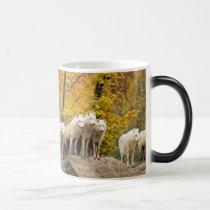 White wolf - snow wolf - wolf animal magic mug