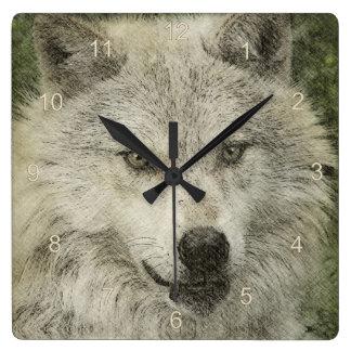 White Wolf Wildlife Animal-lover Design Square Wall Clocks