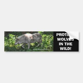 WHITE WOLF Wildlife Conservation Bumper sticker Car Bumper Sticker