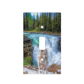 White Wolf y diseño de la fauna de las caídas de Placas Para Interruptor