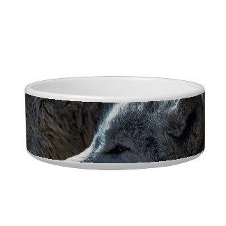 White Wolves in the Full Moon Pet Food Bowls