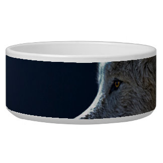 White Wolves in the Full Moon Dog Water Bowl