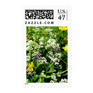 White, Yellow and Lavender Wild Flowers Postage