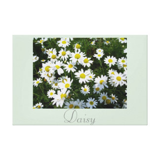 White Yellow Daisy Flower Art Nature Photography 2 Canvas Print
