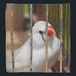 "White Zebra Finch Bird in Cage Bandana<br><div class=""desc"">.</div>"
