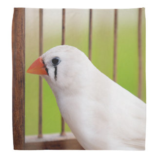 White Zebra Finch Bird in Cage Bandana