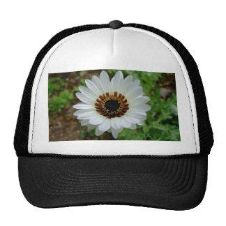 White Zulu prince Daisy Trucker Hat