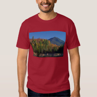 Whiteface Mountain over Little Cherrypatch Pond T-shirt