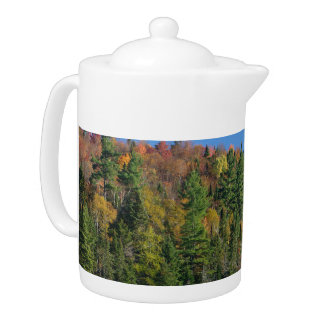 Whiteface Mountain over Little Cherrypatch Pond Teapot
