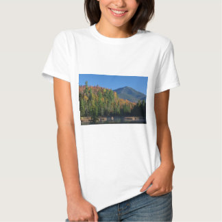 Whiteface Mountain over Little Cherrypatch Pond Tees