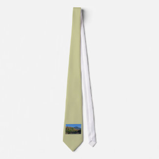Whiteface Mountain over Little Cherrypatch Pond Tie