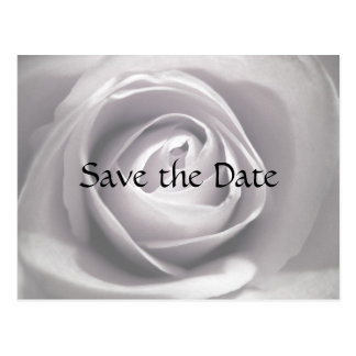 Whiteness, Save the Date Postcard