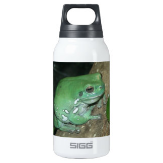 White's Tree Frog, Dumpy Frog Insulated Water Bottle