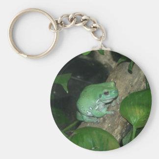 White's Tree Frog, Dumpy Frog Keychain