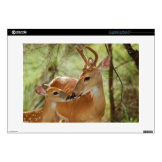"""Whitetail Buck And Fawn Bonding Decal For 15"""" Laptop"""