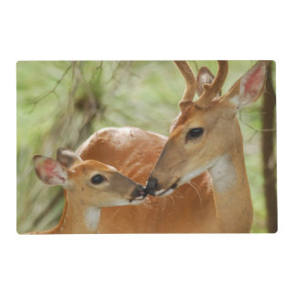 Whitetail Buck And Fawn Bonding Laminated Placemat