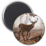 WhiteTail Buck Fall Leaves 2 Inch Round Magnet