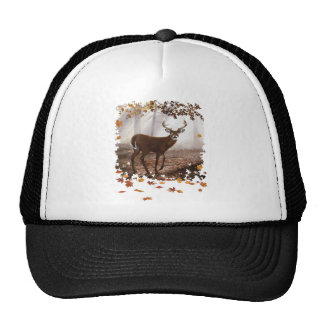 WhiteTail Buck Fall Leaves Trucker Hat