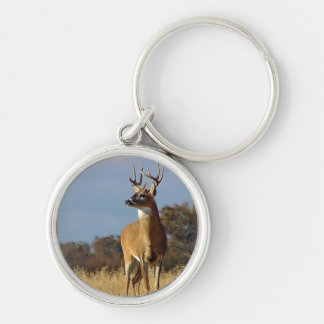 Whitetail Buck Key Chain