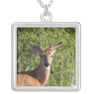 Whitetail Buck Necklace
