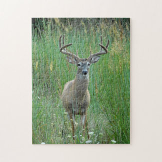Whitetail Buck Puzzle