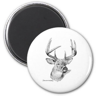 Whitetail Deer 2 Inch Round Magnet