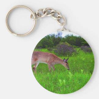 Whitetail Deer Basic Round Button Keychain