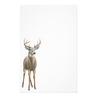 Whitetail Deer Buck Stationery