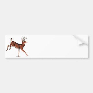 Whitetail Deer Car Bumper Sticker