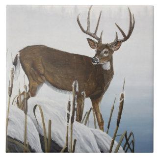 Whitetail deer ceramic tile