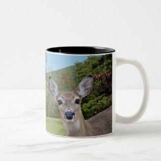 Whitetail Deer (Doe) Mug