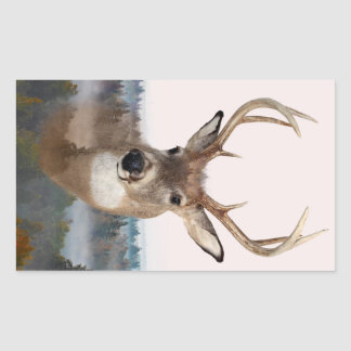 Whitetail Deer Double Exposure Rectangle Stickers
