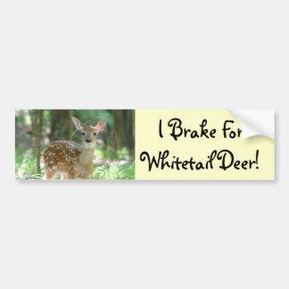 Whitetail Deer Fawn Bumper Sticker