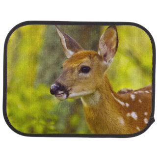 Whitetail deer fawn in Whitefish, Montana, USA Car Floor Mat