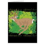 Whitetail Deer Grunge Greeting Card