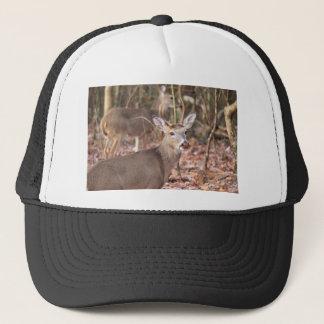 Whitetail Deer Hat
