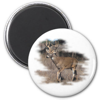 Whitetail deer in the field 2 inch round magnet