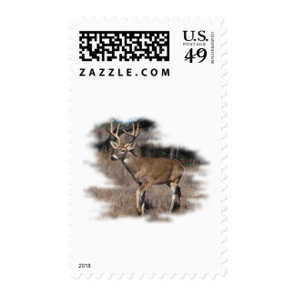 Whitetail deer in the field postage stamps