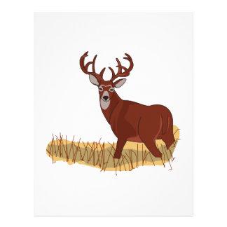 Whitetail Deer Letterhead