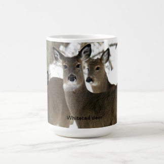 Whitetail Deer Classic White Coffee Mug