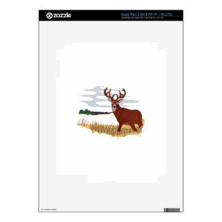 Whitetail Deer Scene iPad 3 Decals