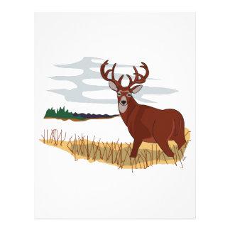 Whitetail Deer Scene Letterhead