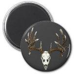 Whitetail deer skull 1 2 inch round magnet