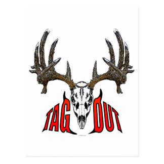Whitetail deer skull postcard