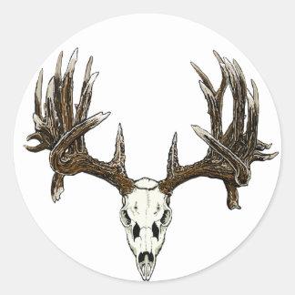 Whitetail deer skull classic round sticker