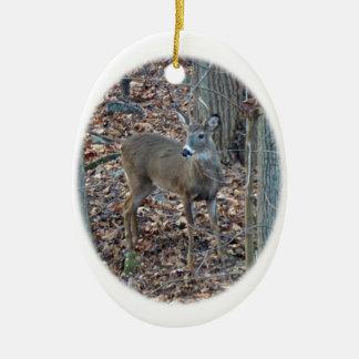 Whitetail Deer Spike Buck Christmas Ornament