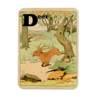 Whitetail Deer Stag Alphabet Rectangular Photo Magnet